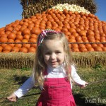 An Afternoon at the Pumpkin Patch