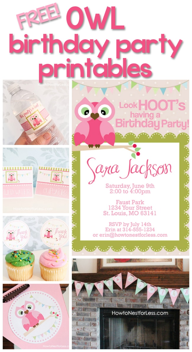 Owl themed birthday party with free printables how to nest for less owl birthday party printables solutioingenieria Gallery