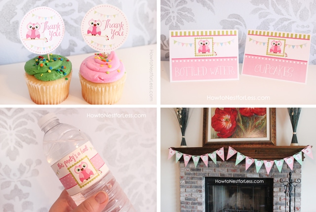Owl Birthday Party With Free Printables How To Nest For Less