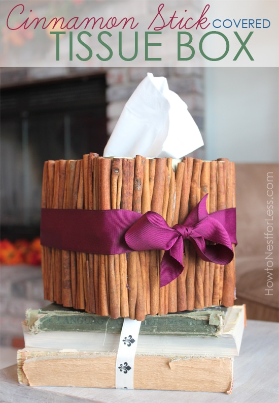 Cinnamon Stick Tissue Box