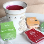 scentsy scentrend 2013