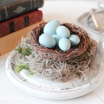 Spring Bird's Nest Cloche