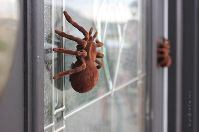 Halloween tarantula front door