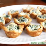 Kickin' Spinach Cheese Bites recipe
