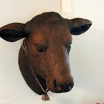 cow head giveaway