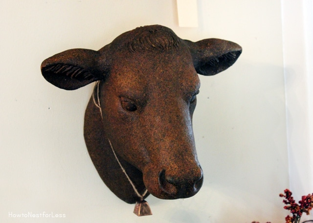 Gallery For gt Cow Head