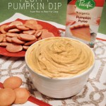 fluffy pumpkin dip recipe