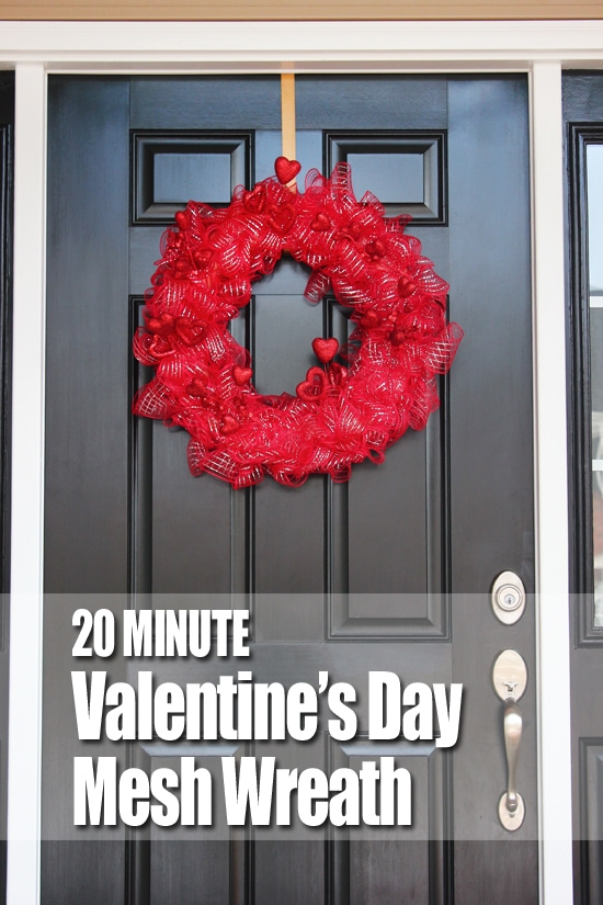 20 Minute Valentine's Day Mesh Wreath graphic.