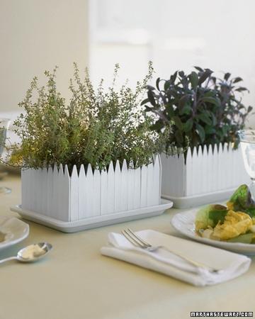 herb garden centerpiece