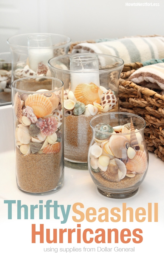 thrifty seashell hurricanes