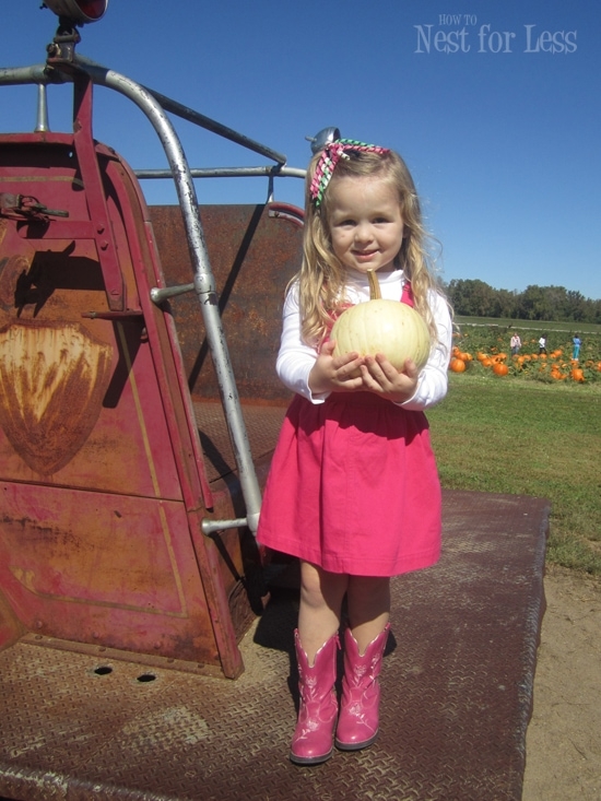 pumpkin-patch-cowgirl-boots