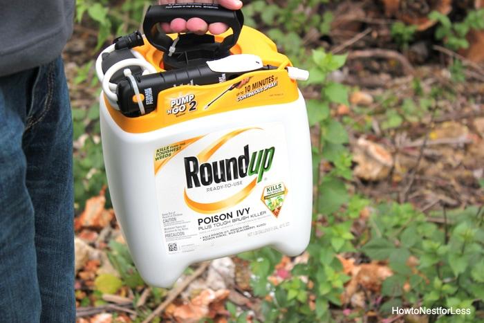 roundup poison ivy killer