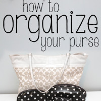 How to Organize a Large Purse