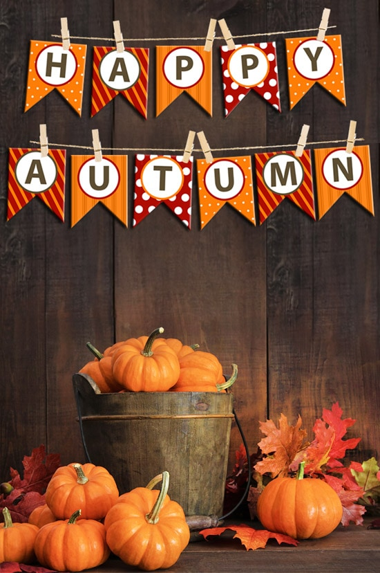 happy fall bunting banner