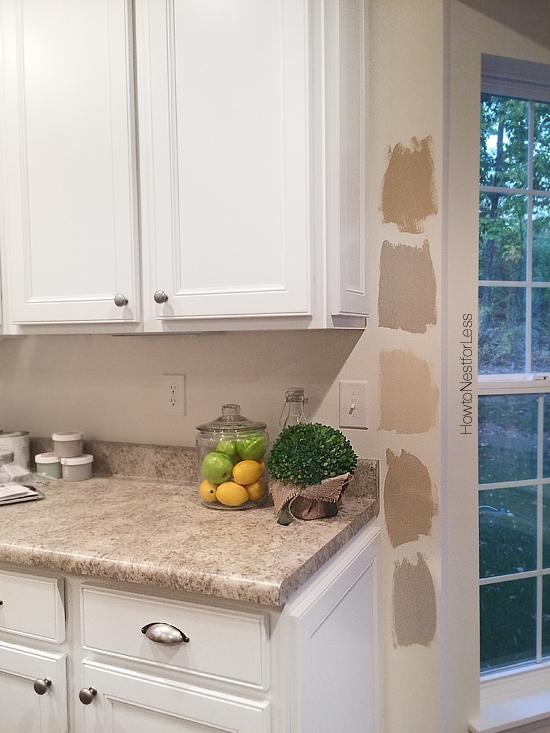 interior paint color options