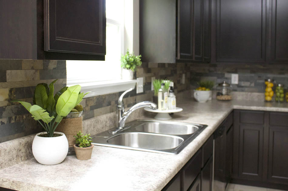 Green plants on counter in kitchen.