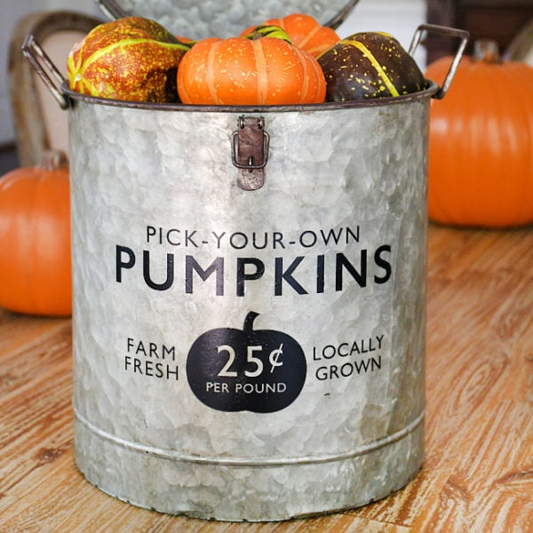 Farmhouse Pumpkin Bucket
