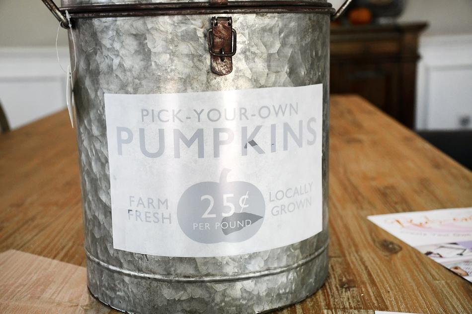 The pumpkin sticker on the galvanized farmhouse bucket.