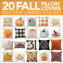 20 Fall Pillow Covers for Under $10