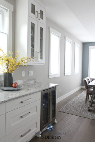 Sherwin Williams Colonnade Gray in kitchen