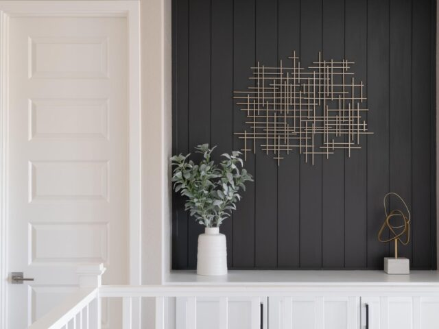 SW Iron Ore shiplap feature wall